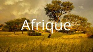 déménagement Afrique